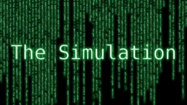 The Simulation